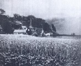 The Onion field, Davison George, photogravure, 1889